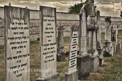 jüdischer Friedhof in Saluzzo - Foto: © Wolfram Mikuteit